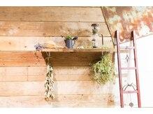 ヘアメイク ベンチ(hairmake Bench)の雰囲気(レトロ調のインテリアと緑に囲まれた落ち着いた空間。)