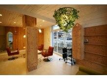 コバコ(COVACO)の雰囲気(木がふんだんに使われており、森の中のような店内です♪)