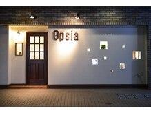 髪質改善ヘアエステサロン オプシア(OPSIA)の雰囲気(ご来店のお客様の事を考え、外から中が見えないようになってます)