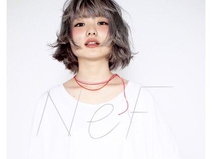 ネフ(NeF)の写真