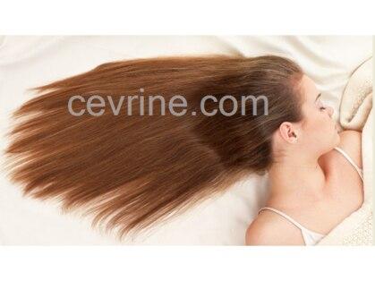 セブリーヌ(Cevrine)の写真