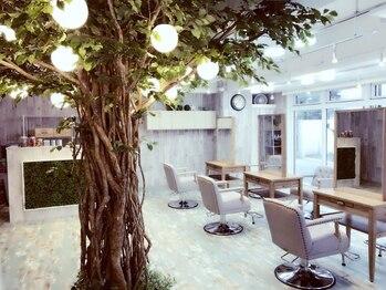 アルベロ(albero)の写真/【親子で通える☆】店内は緑のある癒しの空間!!おしゃれママのためのマンツーマン×オーガニックサロン♪