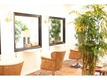 ミューズ(MUSE)の雰囲気(大きな鏡、ゆとりある席でゆったりお過ごしください♪)