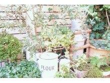 プラス(Pluss)の雰囲気(緑に囲まれていてカフェのような空間です☆【天神・今泉】)