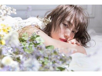 シーン リタ(sCene Rita)の写真