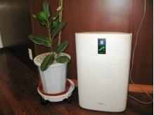 ヘアーライフグリーン(HAIR LIFE green)の雰囲気(爽やかな空間を保つ為、たくさんの植物と空気清浄機をご用意。)
