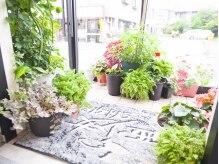 西少女 コア(Quoi)の雰囲気(緑いっぱいのサロン☆季節の移り変わりも楽しめる♪)