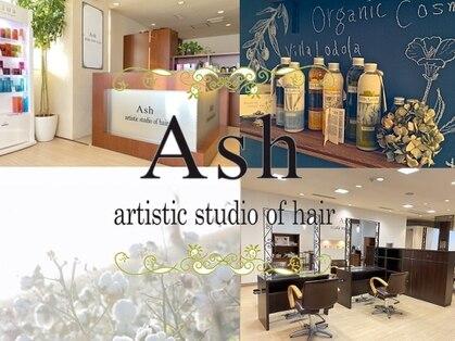 アッシュ アーティスティック スタジオ オブ ヘア(Ash artistic studio of hair)の写真