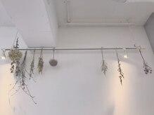 ヌル ヘア デザイン(nullus hair desigh)の雰囲気(Open時にお客様に頂いたお花や植物をドライフラワーにしました!)