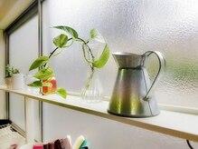 リサリサ(Risa Risa)の雰囲気(植物がや置かれているナチュラルな雰囲気の店内)