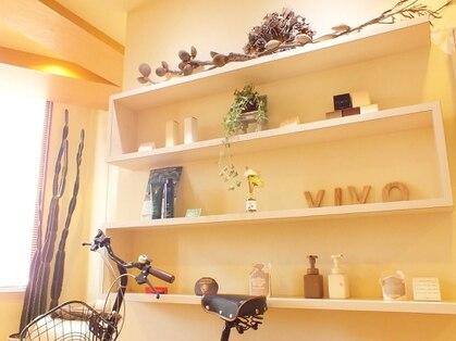 ビボ(Vivo)の写真