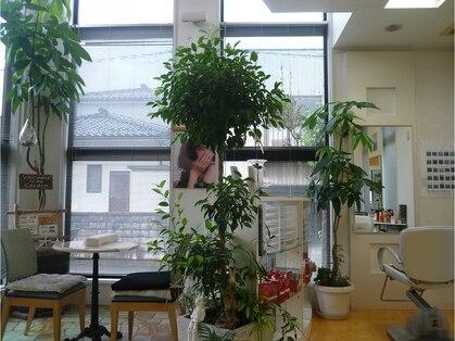美容室ユウ(YOU)の写真
