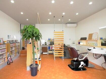 Comic & Cut Studio SORA