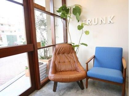 トランク(TRUNK)の写真