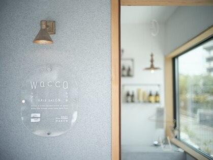 ワッカ(wacca)の写真