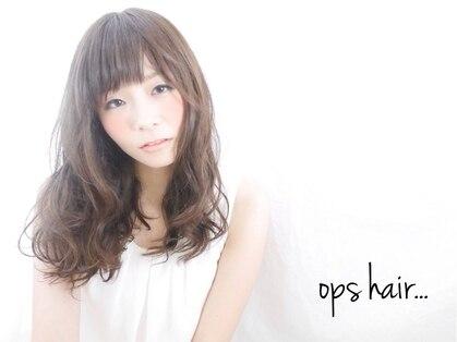 御髪(オグシ)の写真