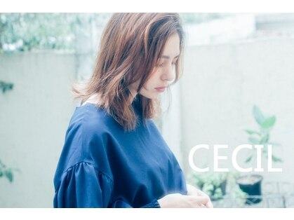 セシル(CECIL)の写真