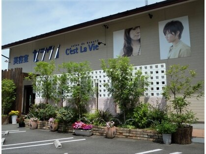 美容室 セラヴィ 福島本店の写真