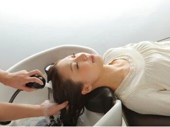 ビューティーランド 土浦文京町店(BEAUTY LAND)の写真/髪質の変化を実感するにはやっぱり頭皮ケアが大切◎ベタつき・フケ・かゆみetc頭皮の悩みはヘッドSPAで解決