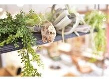 テトテ 門戸厄神店(tetote)の雰囲気(店内は可愛い雑貨や緑に溢れカフェのような空間♪西宮/門戸厄神)