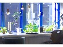 ターミナル(TERMINAL)の雰囲気(窓際のcafeカウンターがお店で1番のリラックススペースです。)