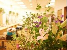 美容室 ジュモー(jumeau)の雰囲気(緑の多い店内なので、施術中もリラックスしていただけます☆)