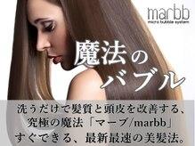 アフェクト チャーム マーチ(affect Charm/MARCH)の雰囲気(魔法のバブル導入サロン!最新最速の美髪法)