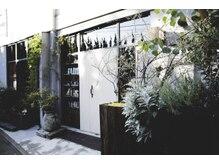 ウォール(wall)の雰囲気(たくさんの植物に囲まれた入り口が目印です)