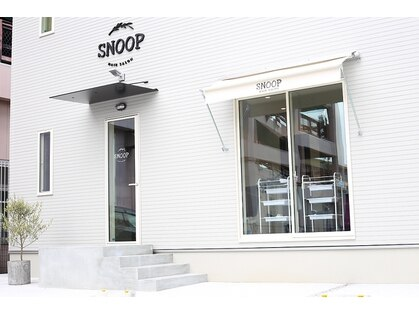 hair salon SNOOP