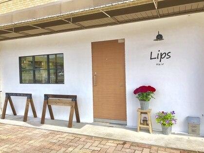 リップス(Lips)の写真