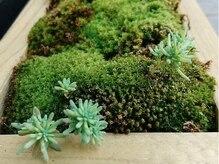 ピコセコンド(PICO SECOND)の雰囲気(入り口から癒しのグリーンがお出迎えします。)