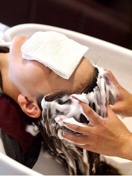 パンヘア(PANHAIR)の写真/炭酸泡の力で皮脂と汚れを浮かせ、フケ・かゆみを効果的に防ぎ、頭皮と毛髪を健やかに導きます。