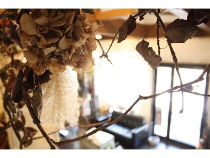 ヘアーサロン カミヤ(hair salon kamiya)の写真