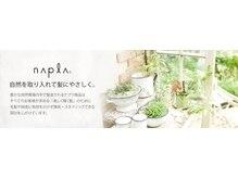オーガニックトップブランドの《ナプラ》とタイアップ☆【吉祥寺Piece】