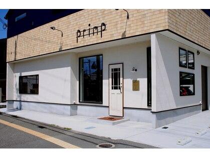 プリンプ(primp)の写真