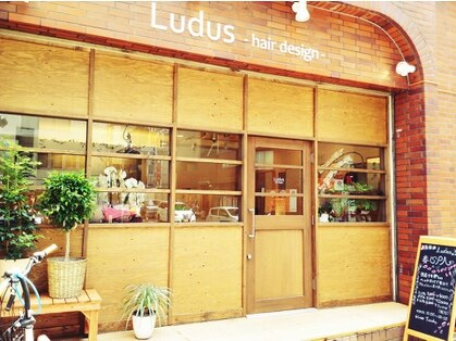 ルードゥス ヘアーデザイン(Ludus hair design)