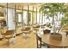ビゼン 東伏見本店(hair make BIZEN)の雰囲気(外からの自然光が気持ちいい、広々とした空間です。)