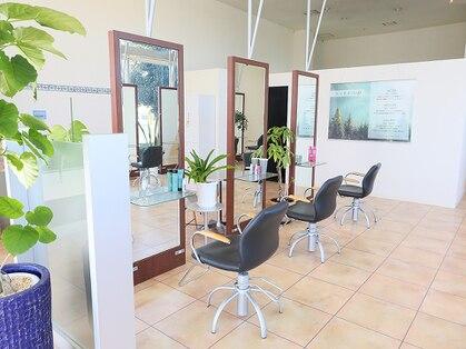Hair Salon spruce