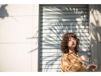 コノヘアー(CONO HAIR)の写真