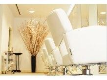 ノイファム(noifam)の雰囲気(店内の植栽は、季節ごとに変わります。)