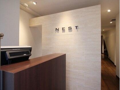 ネスト(NEST)の写真