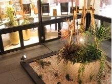 マサゴ アヴェダ(masago AVEDA)の雰囲気(ライトアップが優艶な中庭)