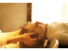 美を叶える極上SPA。豊富なメニューの中から頭皮、髪、心身の状態から一緒に選んでいきます。