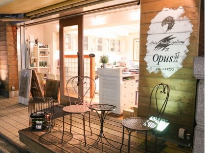 オーパスワン(Opus1)の写真