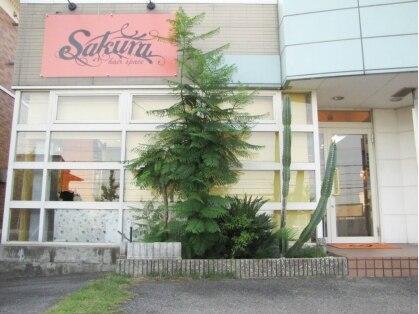 サクラ 羽束師店(SAKURA)の写真