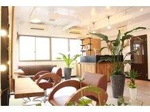 アウラ 長崎店(aura)の雰囲気(グリーン豊かな癒しの空間で綺麗になり、リラックスされて下さい)