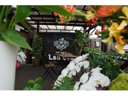 ラウラウヘアーリゾート(Lau Lau hair resort)の写真
