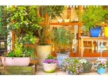 リッカ たまプラーザ(Lycka)の雰囲気(サロンの入り口にはたくさんのグリーンがお出迎え。)