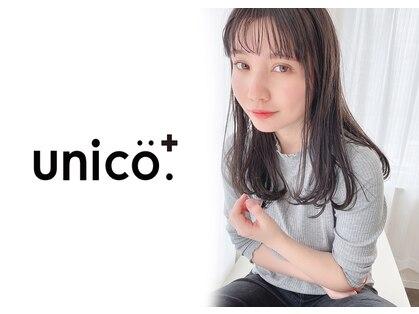 ウニコ(unico)の写真