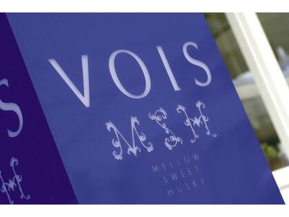 ヴォイス(VOIS)の写真
